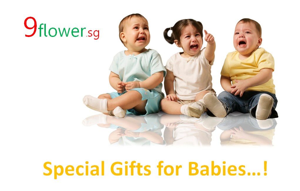 Baby Gift Registry Singapore : Baby gifts in singapore flower sg