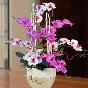 Artificial Phalaenopsis Orchid Table Arrangement 75cm Height