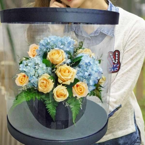 Hydrangeas & Champagne Roses In Round Transparent Box