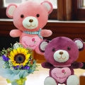 30cm Love Bear ( Pls Choose 1 Only ) With SunFlower Standing Bouquet