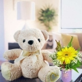 10 inches Bear With Gerbera Flower Standing Bouquet