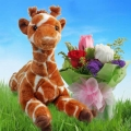 stuffed toy & Flower