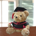 Add-on 18cm Sitting Graduate Bear