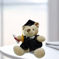 Add-on 6'' Graduation Teddy Bear