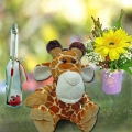 Message-in-Bottle/Giraffe/Flowers