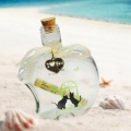 Message in a Bottle (With I Love You Tag)