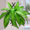 Artificial Dracaena Leaves About 38cm Height.