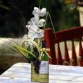 Live Phalaenopsis Orchids Arrangement With White Wine