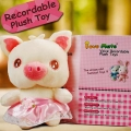 "Add-on 6"" Piggy with Voice Recorder"