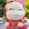 "Add-on 6"" Plush Toy with Voice Recorder"