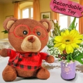 Yellow Gerbera and 6 Inches  Bear with Voice Recorder