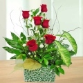6 Red Roses Arrangement