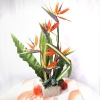 5 Bird of paradize Table arrangement (order 1 day advance )