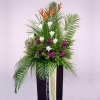 Heliconia with White lily In Box Stand 6 feet height