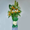 Artificial Sun Flowers & Fresh White Pompom in Box Stand for Opening Flower Arrangement