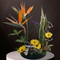 Bird of paradise Fresh Flowers ikebana Arrangement