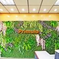 Artificial Vertical Garden | Green Wall Singapore‎