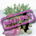 Add-on 8 inches Couple Wedding Bear WDB009