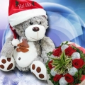 X'Mas Bear & Roses Delivery