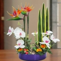 Ikebana with Artificial Bird of Paradize & flowers 50cm Height