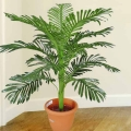 Artificial Palm Tree 3 Feet