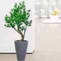 Artificial Buddhist Pine Tree With Planter 120cm Height