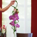 Hand Carry Purple Phalaenopsis Orchids Bouquet